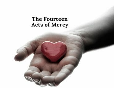 The Fourteen Acts of Mercy