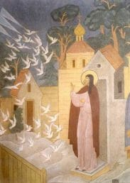 Sergius of Radonezh and the vision of Birds